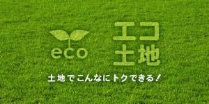 ecotochi
