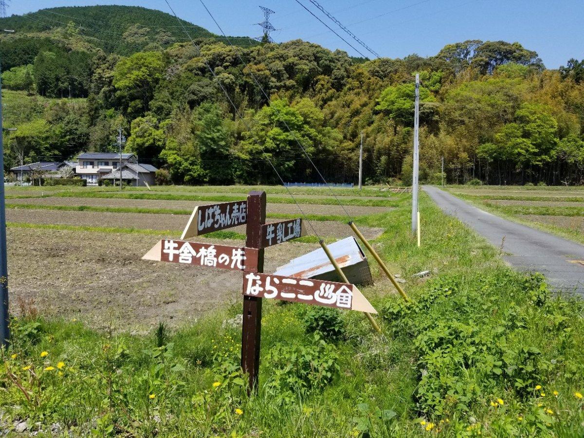 インスタ映えする牧場カフェ *掛川市大和田*