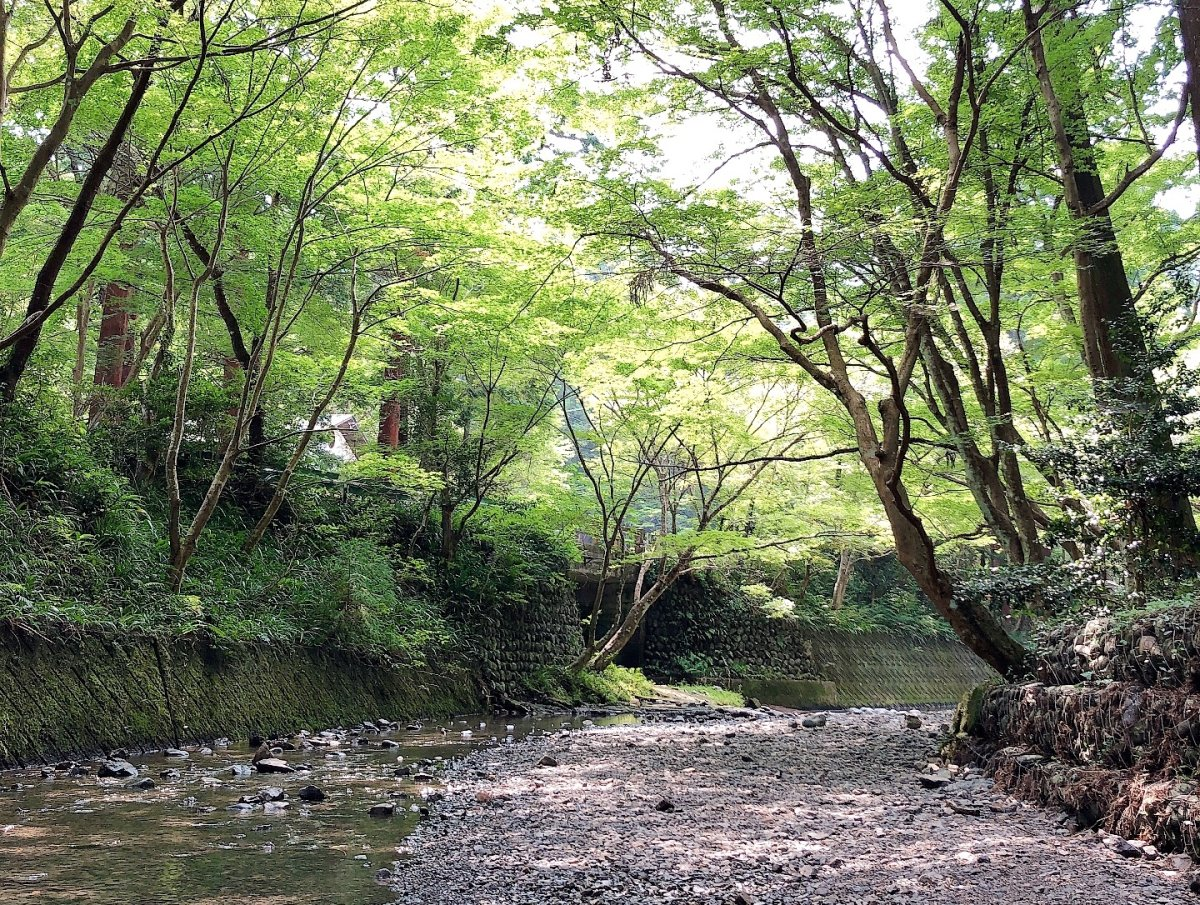森町、子連れ川遊びスポット*