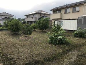 2019-07-23 16.55 (10)掛川市和光 あかり不動産